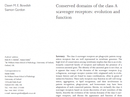 COnseved domains of caSRs